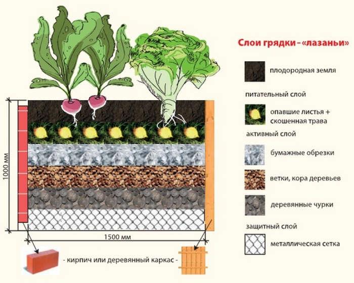 Чтобы корням еще нежной молодой рассады было тепло, необходимо грамотно заполнить деревянный, шиферный или кирпичный каркас теплой грядки