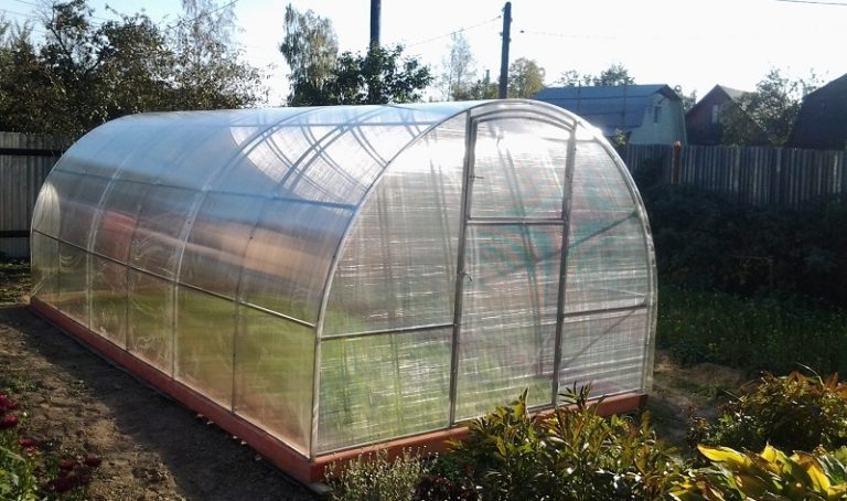 Теплица приспособлена для выращивания высоких сельскохозяйственных культур в течение всего сезона от стадии посадки семян до сбора урожая