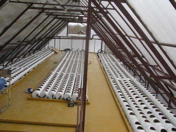 Эффектным выходом из подобной ситуации является обустройство сооружений парникового типа на крыше дома, летней кухни, сарая или гаража