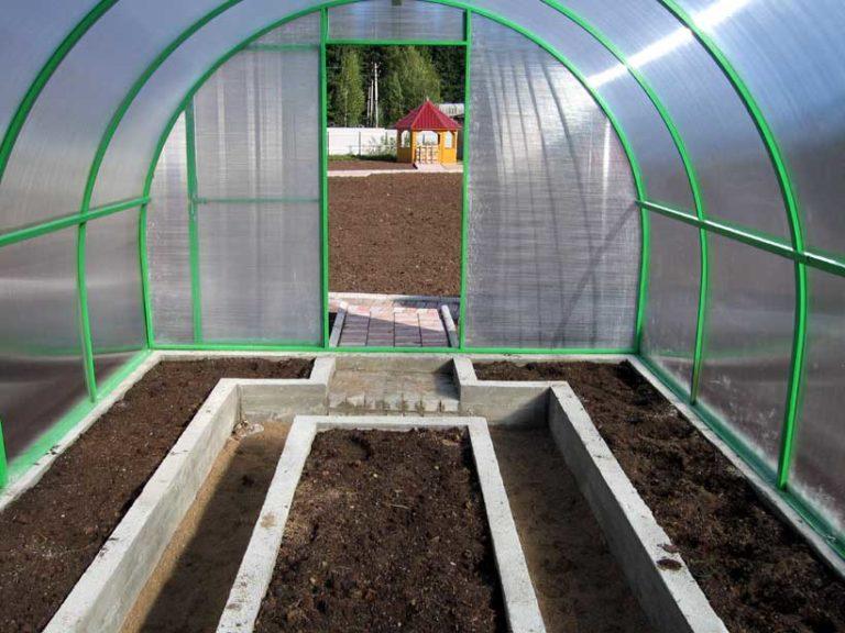 Обработать теплицу из поликарбоната осенью необходимо сразу после окончания огородного сезона, когда все культуры убраны