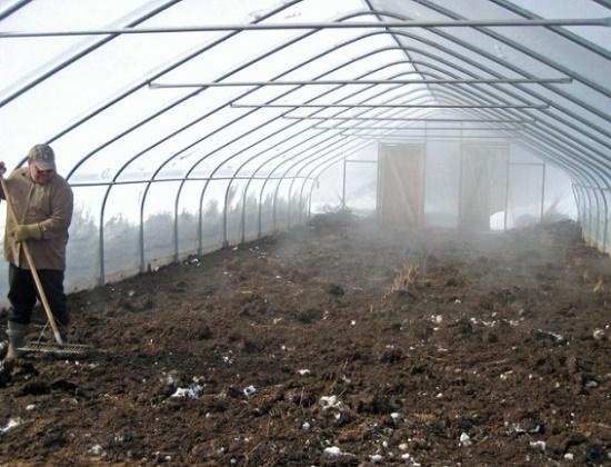 Для дезинфекции почвы следует снять верхний слой на 9-12 см
