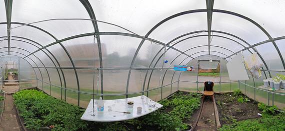 Планируя будущее расположение парника, садовод должен помнить об изменчивости положения светила в разные периоды года