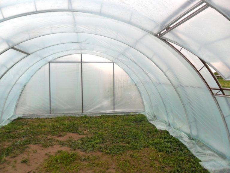 Можно заменить поликарбонат стеклом. Но в таком случае будет наблюдаться значительная потеря тепла