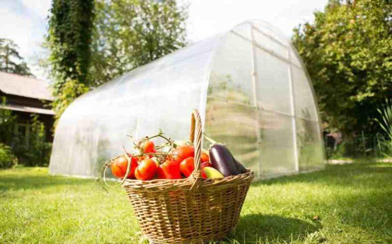 Теплицу Урожай можно эксплуатировать и без фундамента, но лучше его установить