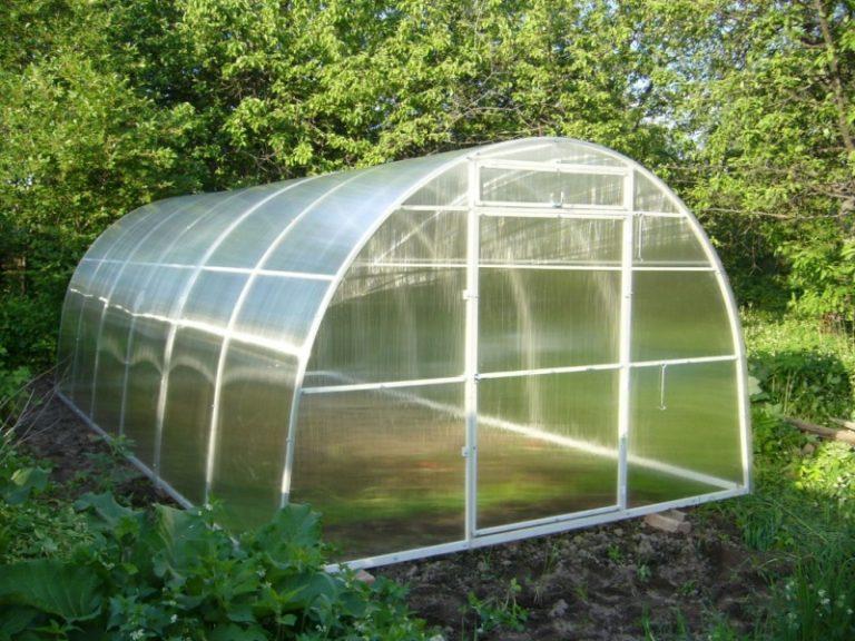 Теплицы Уралочка достаточно часто приобретаются для выращивания ранних овощей