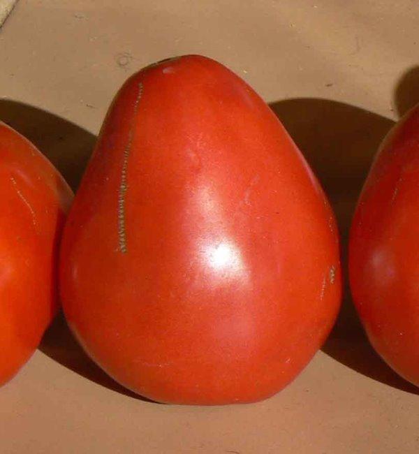 Томат вырастает мясистым, его цвет может меняться от розового до красного