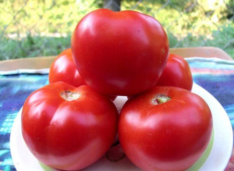 Средний вес одного томата примерно 230 г. Кисть обычно содержит от 7 до 9 плодов