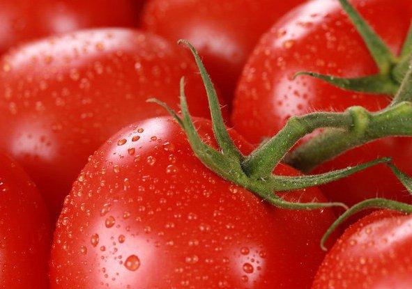 В наше время одним из самых популярных сортов помидоров у огородников считается томат Санька