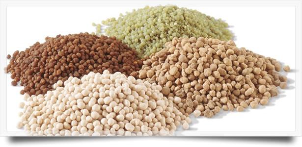 В качестве осенней подкормки можно использовать органические, калийные или фосфорные удобрения