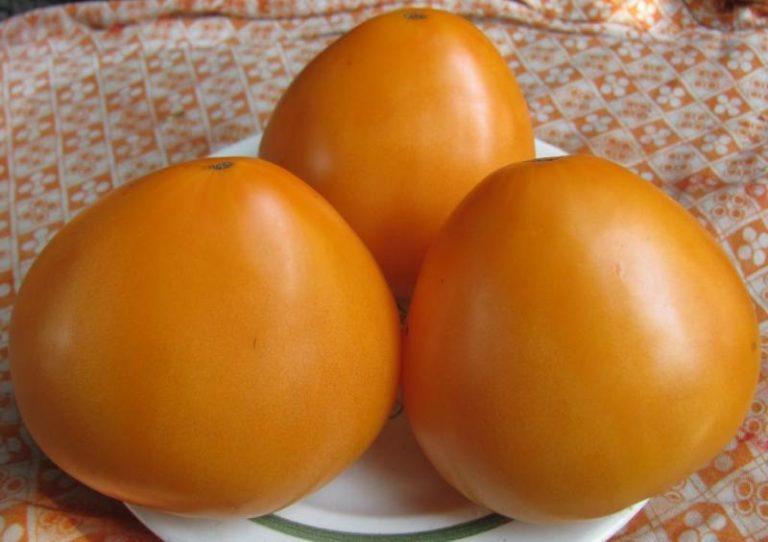 Желтый цвет овоща выбран не случайно, ведь из помидора исключены пигменты, которые способны вызывать специфические реакции человеческого организма