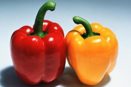 Удобрение для перца - очень важное условие роста и плодоношения