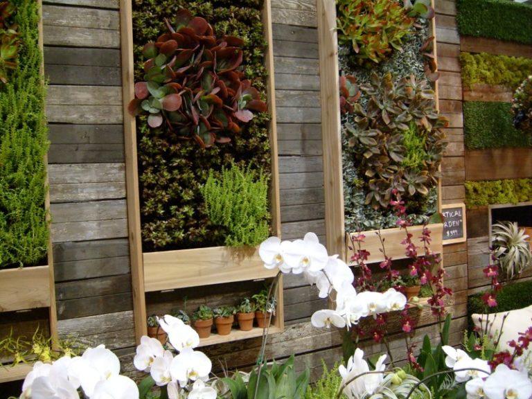 Ограниченная площадь не позволяет выращивать большое количество овощей и ягод, но решить проблему помогут вертикальные грядки