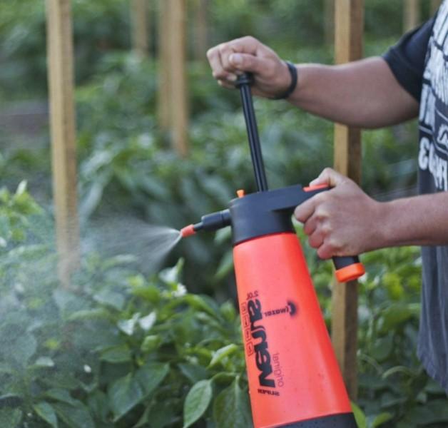 Внекорневая подкормка мочевиной способствует активному росту и развитию листьев и побегов