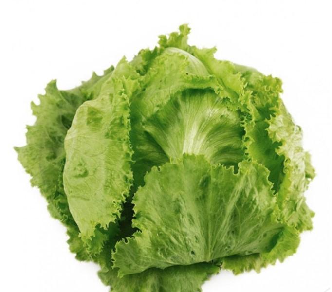 Салат айсберг не только вкусное, но и полезное растение