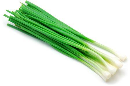 Выращивание лука на перо - процесс совсем не сложный, если подойти к нему с умом