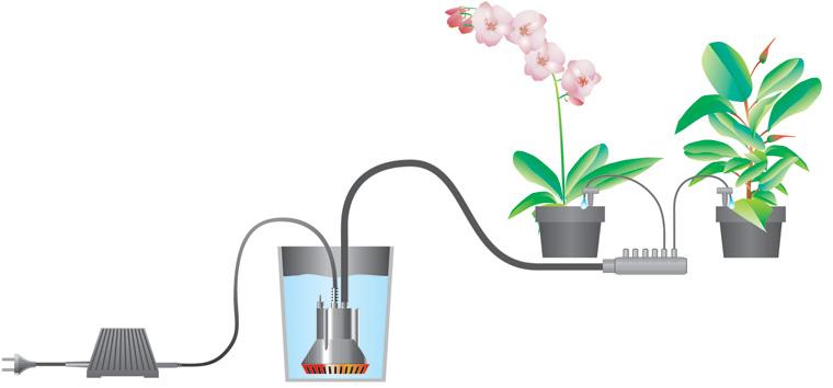 Существует система полива цветов с периодической подачей