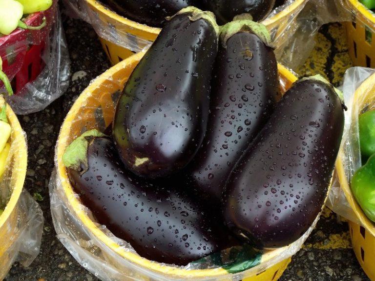 Плод убирается вместе с плодоножкой. С 1 растения за раз можно снять от 5 до 20 плодов