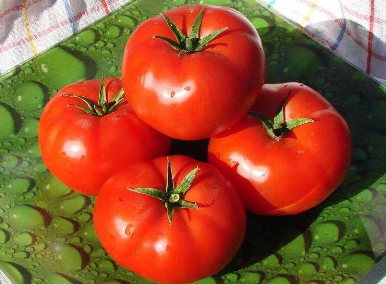 Получив хороший урожай, можно и продать его часть - плоды имеют товарный вид, они вкусные и качественные