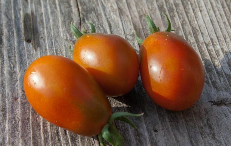 Вкус черного овоща приятный, сладковатый, с характерным томатным ароматом