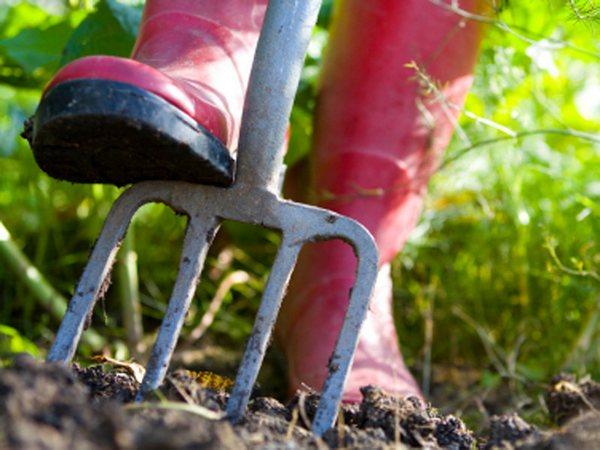 В мае начинается перекопка плодородного слоя земли