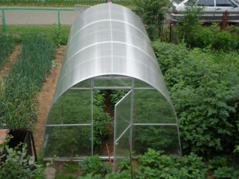 Перед каждым дачником стоит дилемма: поставить одну огромную теплицу длиной 8 метров или собрать несколько небольших