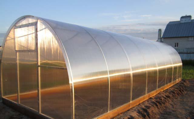 Особая конструкция такой теплицы позволяет обеспечить растения максимальным количеством света и тепла