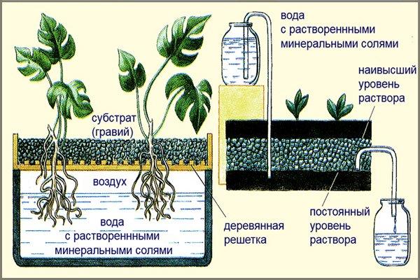 Схемы системы гидропоники