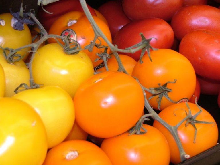 Почему у помидоров желтая окраска? Это обусловлено наличием провитамина А
