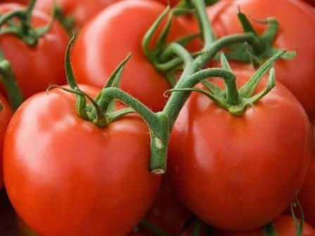 Совершенно все дачники и огородники мечтают вырастить хороший урожай
