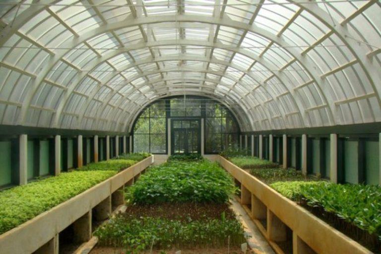 Голландские технологии в строительстве теплиц позволяют не заботиться о том, вырастет ли урожай и как сохранить тепло в сооружении