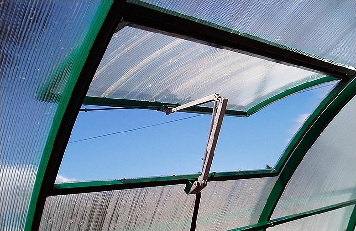 В теплицу вредители могут попасть только одним способом — залетев через открытое на проветривание окно