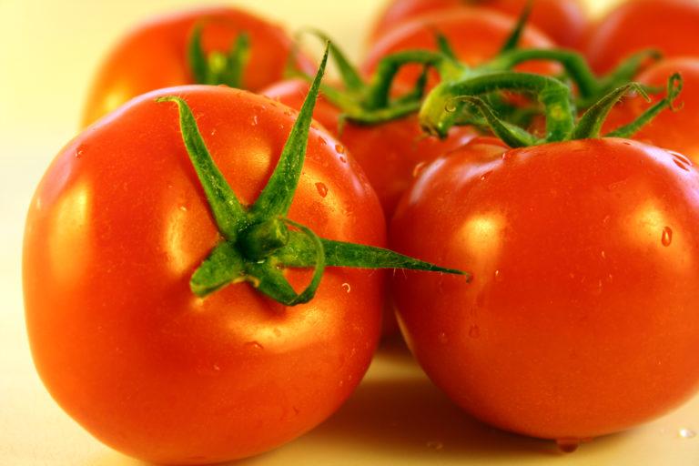 Выращивание томатов этого сорта лучше производить целиком в теплице
