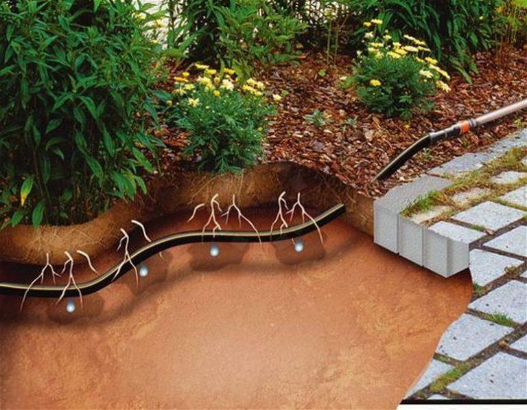 Капиллярная вода играют большую роль в обеспечении плодородия почвы