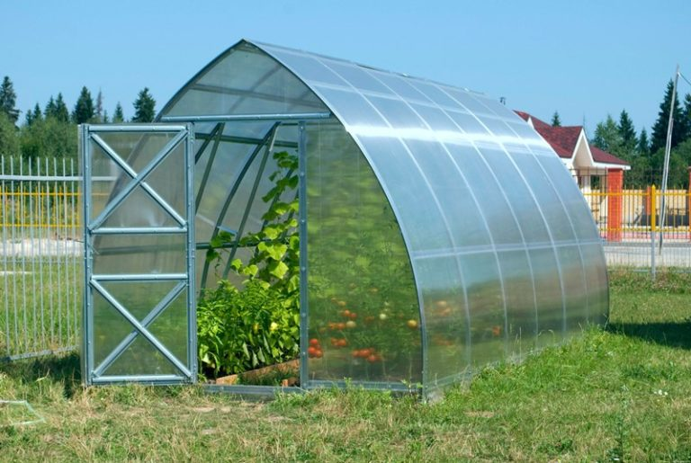 Толщина листов поликарбоната составляет 6 мм, поэтому крыша теплицы не разрушится при сильном граде
