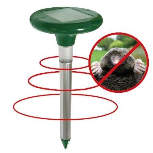 Как правило, мелкие зверьки терпеть не могут вибрации почвы