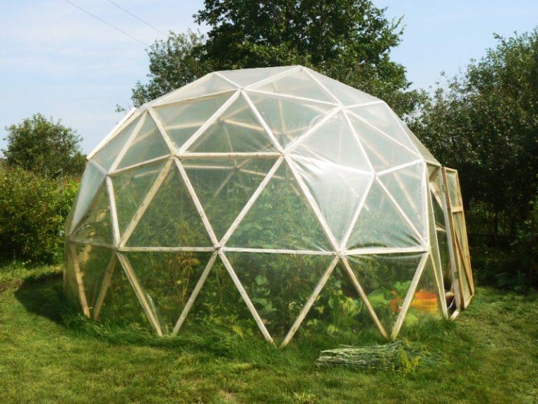 Особенности конфигурации теплицы позволяют создать комфортные условия для самых капризных культур, нуждающихся в обильном солнечном свете