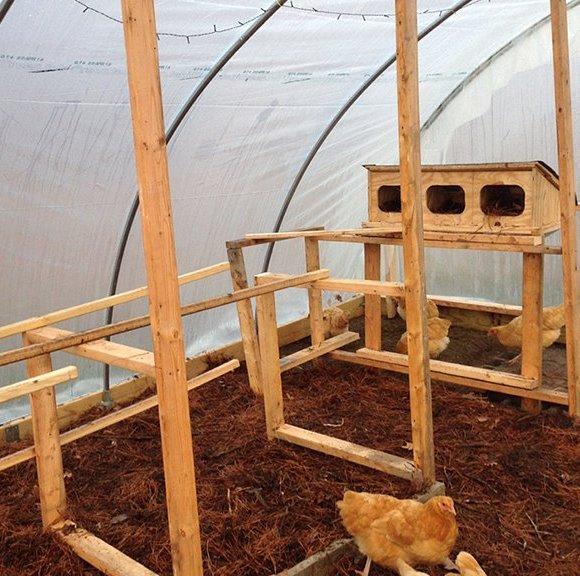 Чтобы куры чувствовали еще больший комфорт, можно построить небольшие деревянные домики и разместить их в курятнике