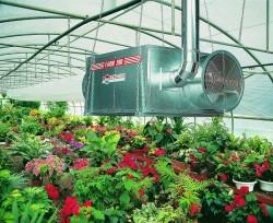 Безусловно, от того, какой обогреватель стоит в теплице, зависит то, какой урожай будет получен
