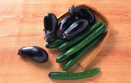 У многих неопытных садоводов возникает вопрос, можно ли выращивать огурцы и баклажаны в одной теплице