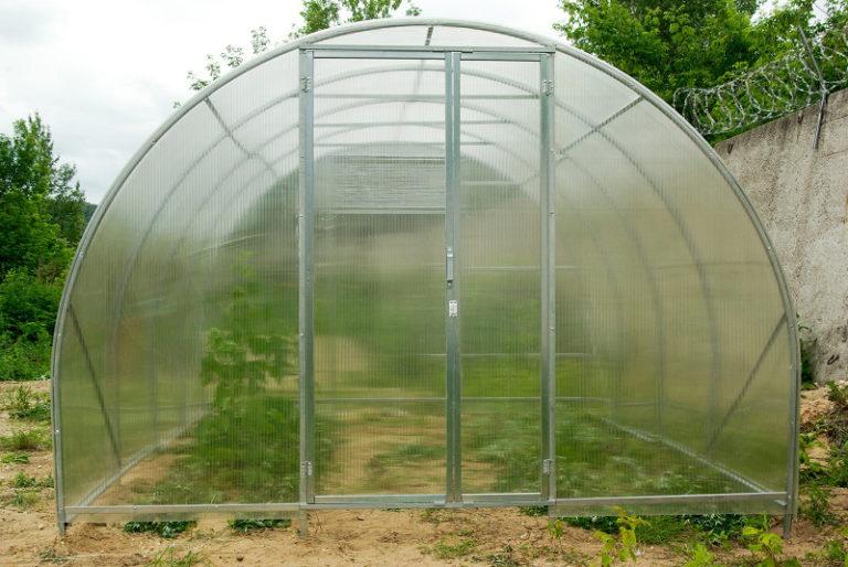 Теплица универсальна, поэтому разместить ее можно в любом месте дачного участка или сада
