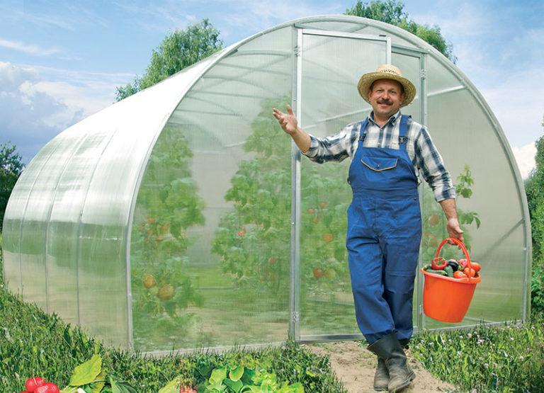 Самое главное то, что выращивание растений в такой теплице способствует повышению урожайности почти на 100%