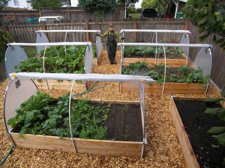 Как построить мини-парник из металлических дуг знает практически каждый огородник