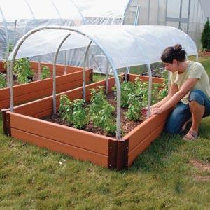 Парники для помидоров востребованы среди владельцев дачных участков, ведь конструкции защищают растения от отрицательных температур