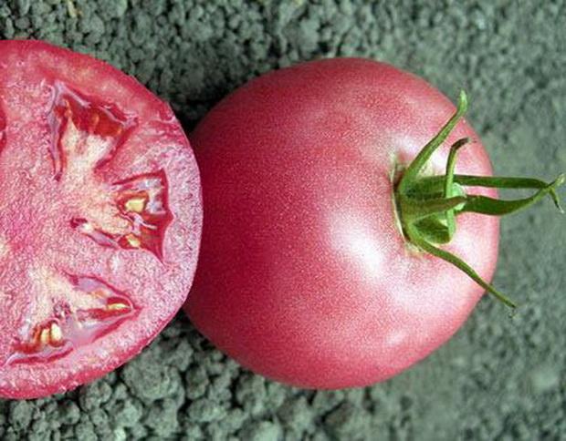 Средняя плотность плода и его мясистость позволяют без проблем транспортировать помидоры
