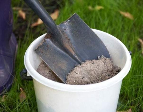 Зольное удобрение. Лучше всего использовать золу в то время, когда стебли еще слабы и тонки