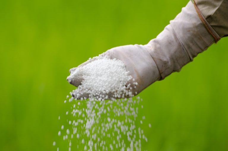 Азот используется в период роста листьев и стеблей