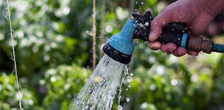 Полив огурцов в условиях теплицы или парника должен идти на пользу огородному растению