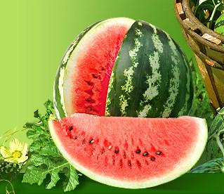 Настоящим летним лакомством является излюбленная ягода - арбуз