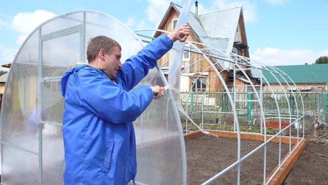 Изготовление теплицы из поликарбоната своими руками имеет то преимущество, что ее можно максимально приспособить под свои конкретные нужды