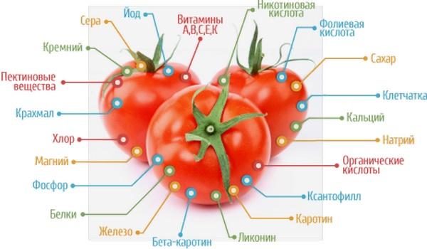 Вред и польза помидоров для мужчин и женщин обусловлены теми химическими соединениями, которые присутствуют в этих овощах